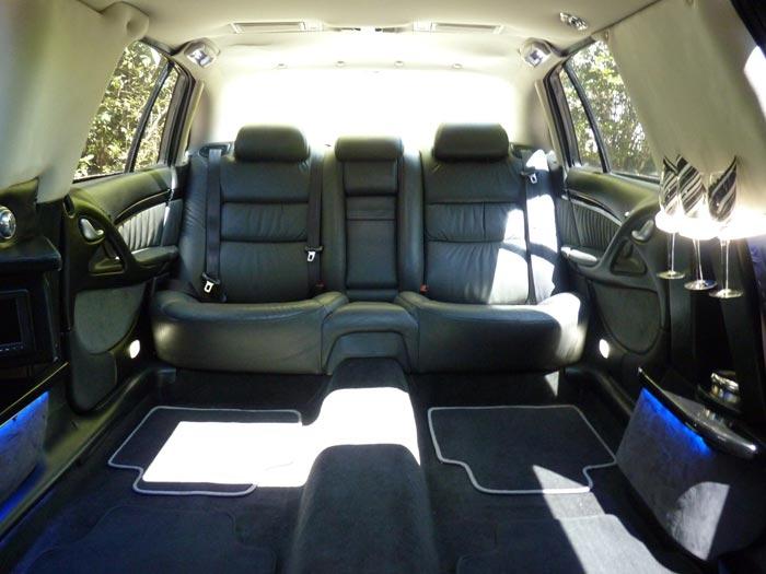 Ivy Back Seat